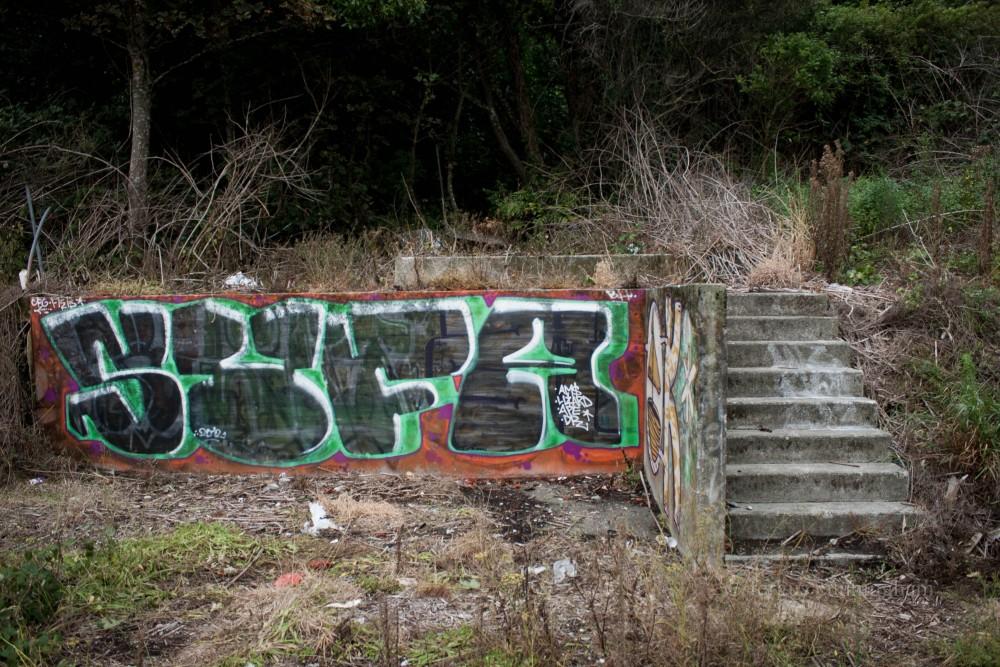 Skate Park (5/6)