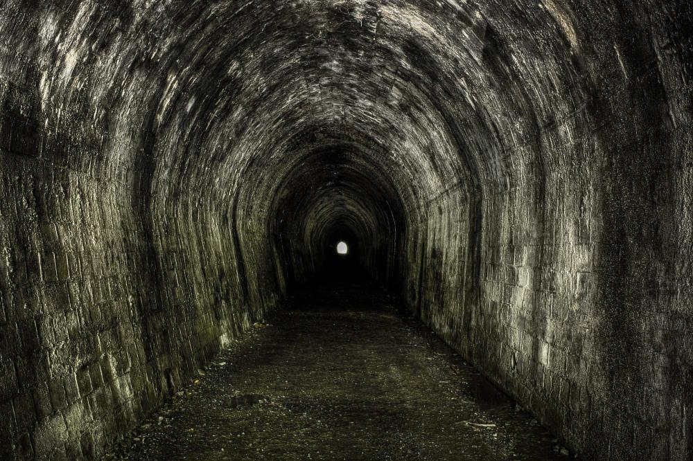 Portal (3/5)