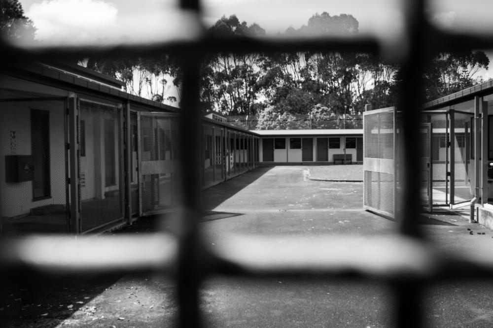 In Prison 6